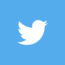 social-logo-twitter